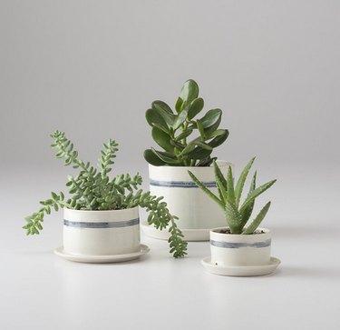 Schoolhouse porcelain planter