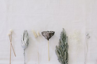 Painted pampas grass and dried flowers