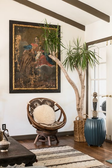 Tall tree plant in urban boho living room