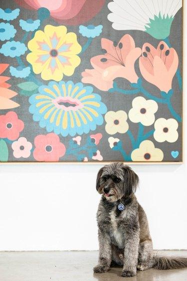 artwork and dog