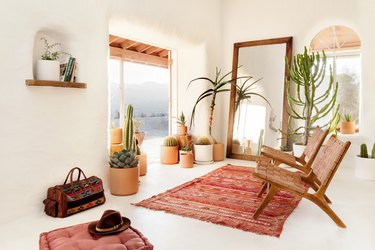 Desert Modern Living Room by Describe the Fauna
