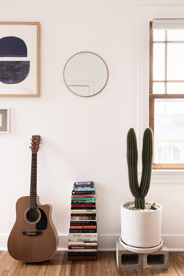 Guitar with stack of books and a cactus plant