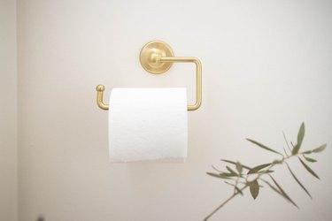 Brass toilet paper holder in bathroom
