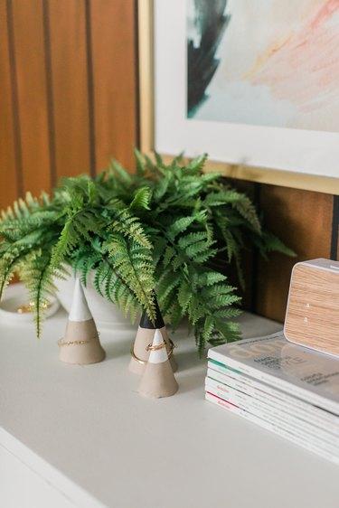Fern plant on a dresser