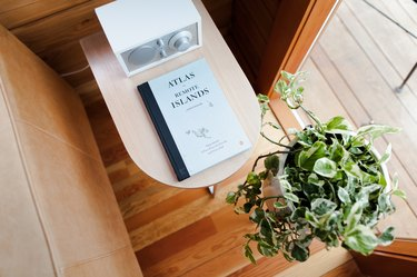 Side table with plant near window