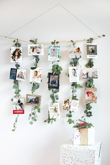 a wall hanging with photos and leafy plants