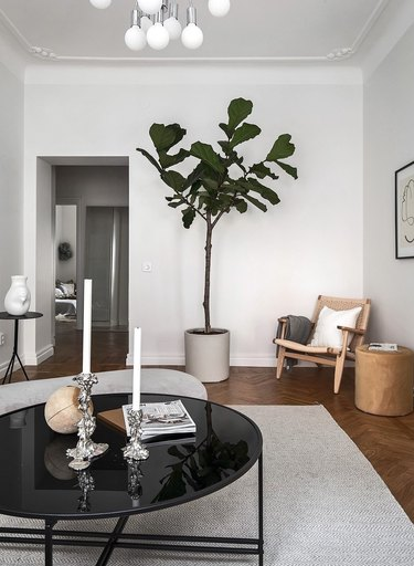 Scandinavian living room idea with eclectic decor and fiddle leaf fig tree