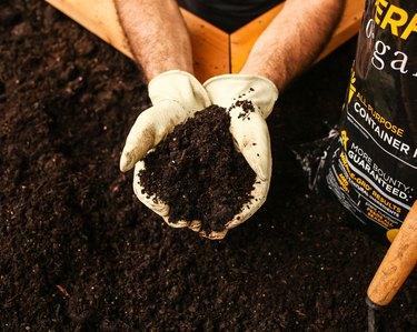 hands holding soil in garden bed