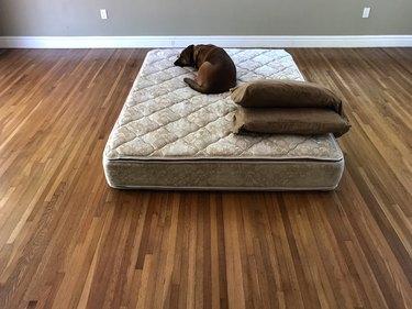 mattress on the floor