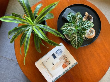 Coffee table with plants and Surf Shack book