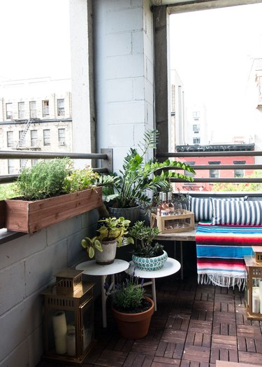 small patio with plants