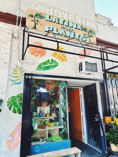Latinx With Plants storefront