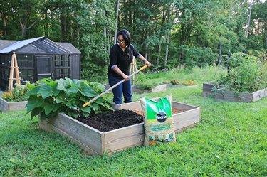 planting fall vegetable garden
