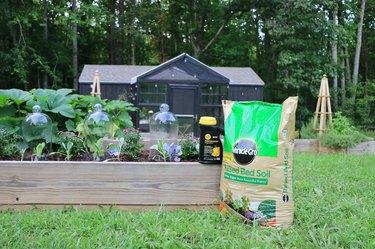 fall vegetable garden raised bed