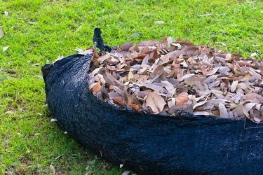 A black plastic weaved tarp, filled with brown, decaying leaves.