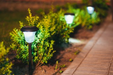 Small Solar Garden Light, Lantern In Flower Bed. Garden Design.