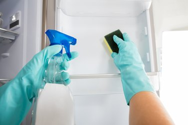 Close-up Of Person Hand Cleaning Refrigerator