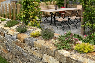 Garden wall with herbs
