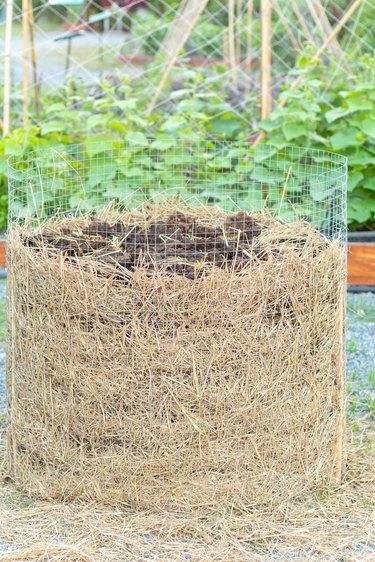 homemade organic fertilizer at the garden