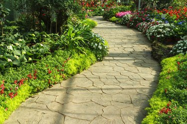 Stone walkway in flower garden.