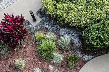 Tropical Landscaping High Angle View