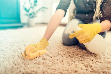 Housewife cleaning carpet.