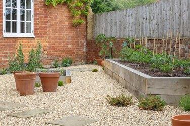 Garden terracotta plant pots