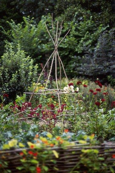 Twig teepee in garden
