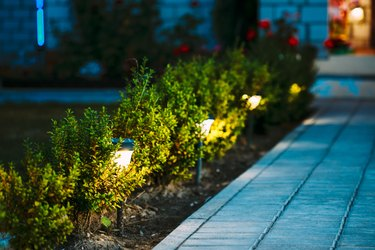 Night View Of Flowerbed With Flowers Illuminated By Energy-Saving Solar Powered Lanterns Along Path Causeway On Courtyard Going To The House