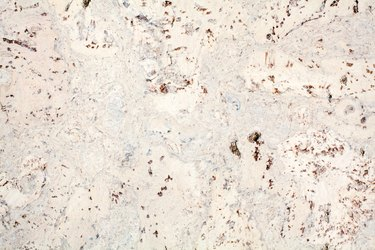 Light beige surface of the cork wood tile closeup, white and brown mottled texture background, abstract gray color decorative spotted pattern, dark stains on light backdrop, marmoreal stone art design