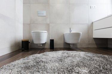 luxury bathroom interior with toilet and  bidet