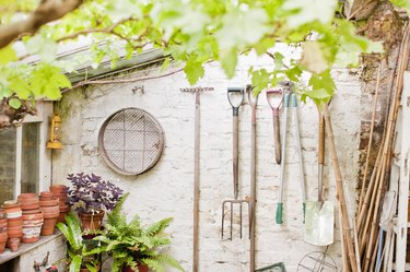 Tools hanging on wall of garden shed