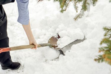 Closeup woman using shovel scoop.