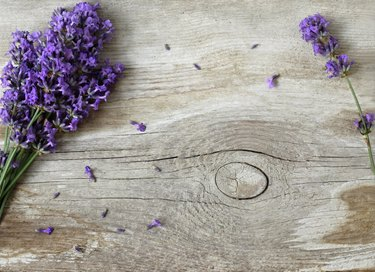 Fresh lavender flowers on a wooden background. Photo from above.