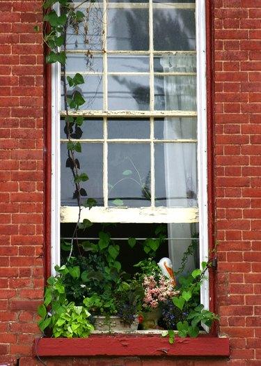 Open window.