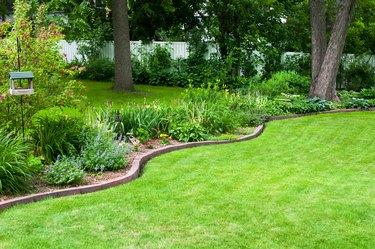 Backyard garden and Lawn
