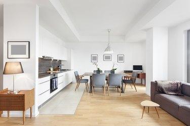 Elegant and Modern Loft Apartment with Open Floor Kitchen