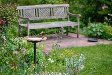 Idyllic green springtime garden with bench and bird bath