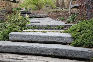 Stone steps in a lush garden