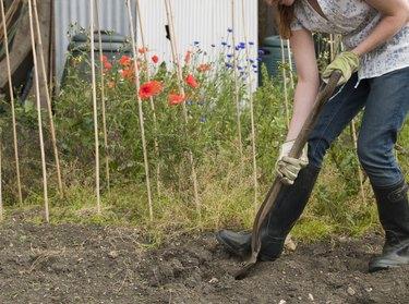 A gardener digging.