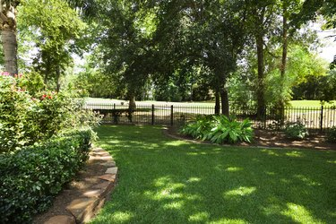 Nature:  Backyard overlooking golf course.  Flowerbeds and shrubs.