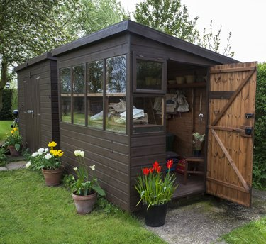 Garden shed exterior with open door, tools, and plants.