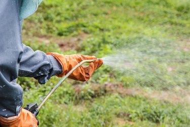 Man  is spraying herbicide