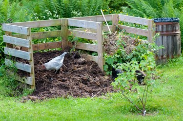 Nens working in the garden compost.