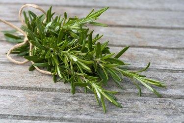 Rosemary bound