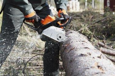 Man sawing tree