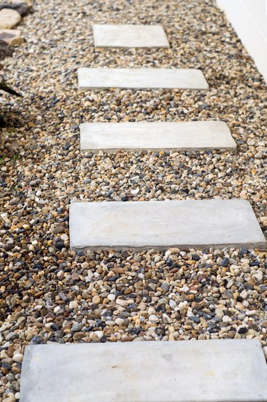 Garden Stone Steps to Backyard with Trees and Plants