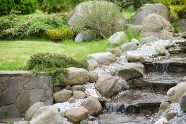 Creek in the garden