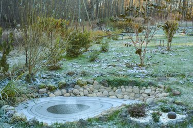 First frost in the garden.