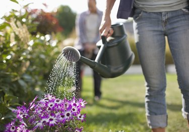Woman watering flowers in garden with watering can
